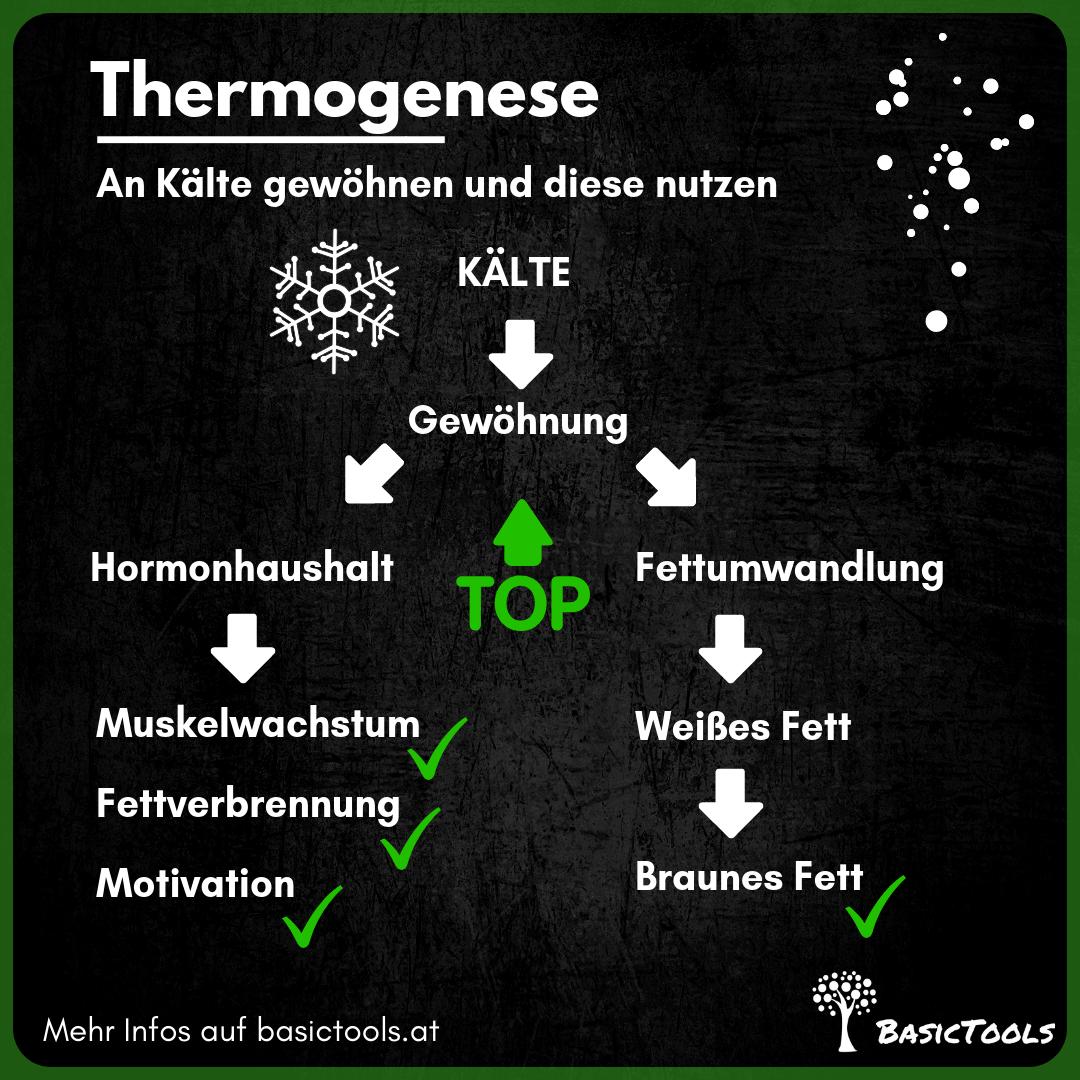 Kälteempfindlich? Besserer Winter mit Thermogenese